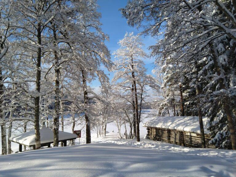 Venevaja talvi